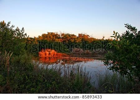 Scenic Landscape Ding Darling Wildlife Refuge Florida - stock photo