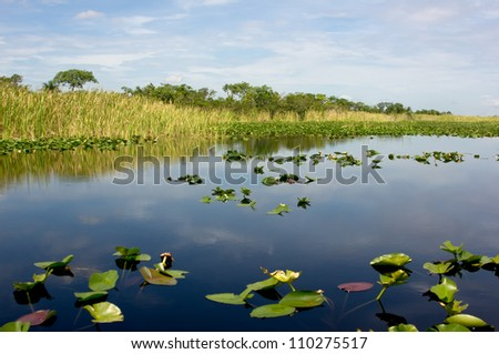 Scenic landscape Florida Everglades - stock photo