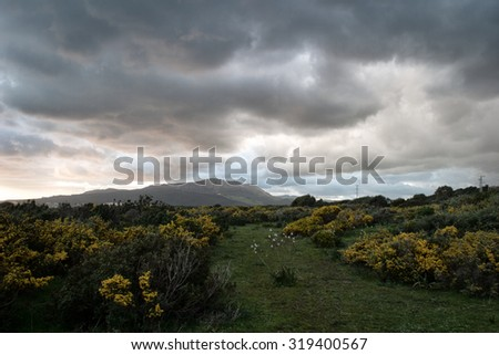 Scenic landscape with stormy grey clouds over mountains and a lush green garden with flowering shrubs - stock photo