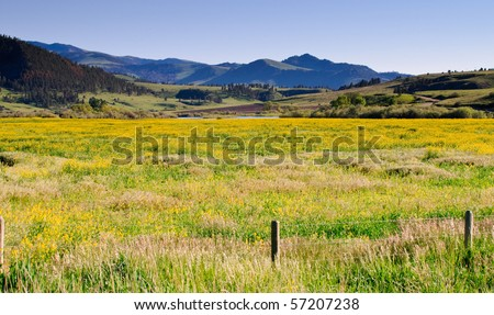 scenic landscapes in the mountains and foothills of Montana, usa - stock photo