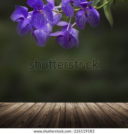 Scenic nature background with violet orchid and wooden table - stock photo