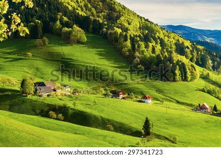 Scenic pastoral landscape with a picturesque mountain valley in Germany, Muenstertal, Black Forest. Toned, diffused.  - stock photo