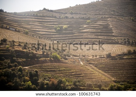 Scenic photo of the Douro Valley in Portugal and vineyards in the mountains - stock photo