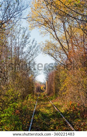 Scenic railroad in autumn in remote rural area - stock photo