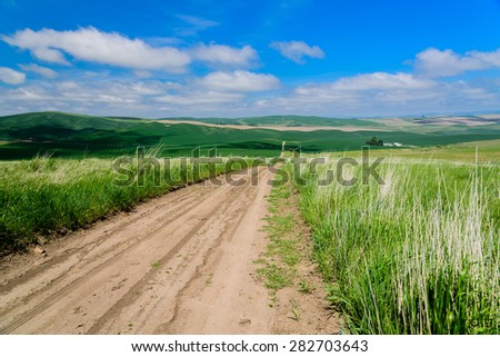 Scenic rural road through rolling hills and wheat fields, leads to the horizon in the Palouse area, eastern Washington, USA. New journey, new job, success, mediation concept. copy space.  - stock photo