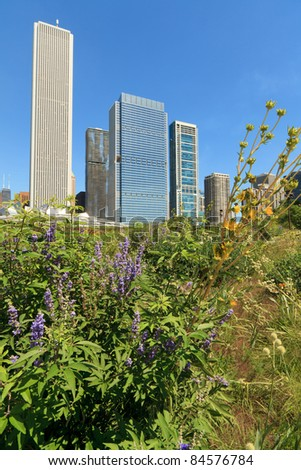 Scenic skyline view of the colorful garden in Millennium Park on a clear blue sky day in downtown Chicago. - stock photo