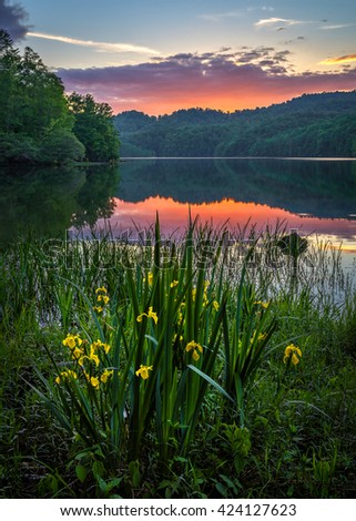 Scenic sunset, wild iris, Appalachian Mountains - stock photo