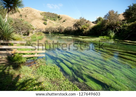Scenic Te waihou River, source of over 70% of new Zealand's natural bottled water. - stock photo
