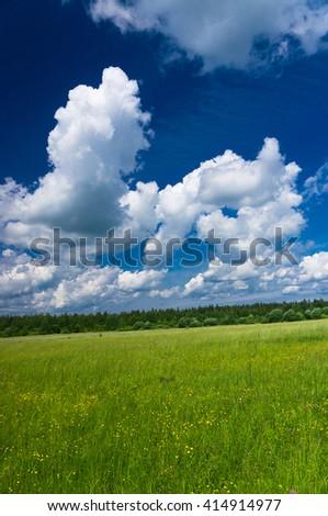 Scenic View Fresh Landscape  - stock photo