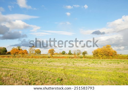 Scenic View of a Farmland Field with a Beautiful Sky Above - stock photo