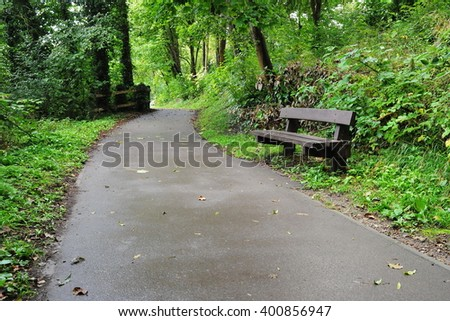 Scenic View of a Forest Walkway - stock photo