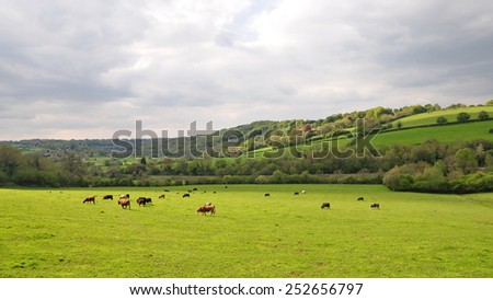Scenic View of a Green Farland Field - stock photo