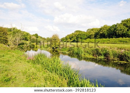 Scenic View of a River Running through Lush Green Meadows - stock photo