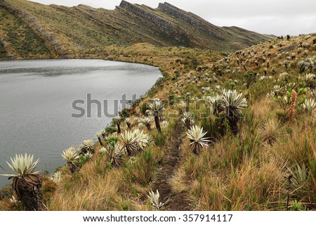 Scenic view of Siecha Lagoon, Chingaza National Park, Colombia. The park is located in the Eastern Cordillera of the Andes, in the northeast of Bogota in the departments of Cundinamarca and Meta. - stock photo