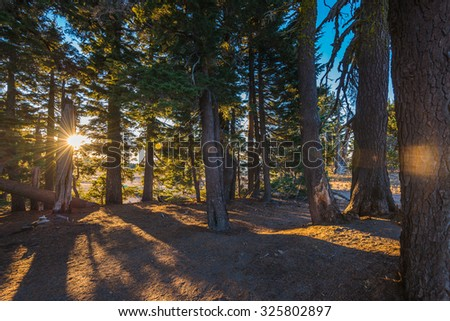 scenic view of sunset in the wild in Crater lake national park on summer time,Oregon,Usa - stock photo