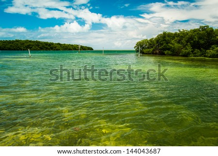Scenic view of the Florida Keys with mangroves along the coastline. - stock photo