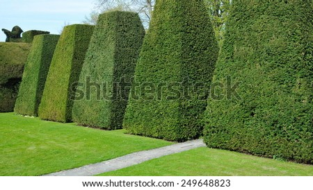Scenic View of Topiary in a Peaceful Green Garden - stock photo