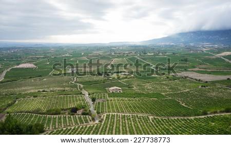 Scenic view of vine fields near Laguardia, Spain. - stock photo