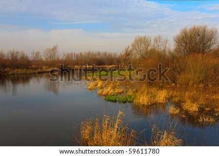 Scenic view of Wieprz river in autumn on a sunny day. - stock photo