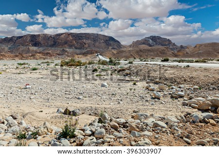 Scenic view on spring stone desert of the Negev and mountain passing Paran, Israel - stock photo