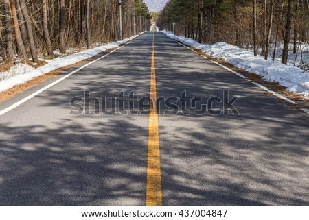 Scenic winter road through icy forest  - stock photo