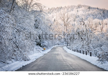 Scenic winter road through icy forest covered in snow after ice storm and snowfall. Ontario, Canada. - stock photo