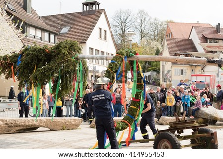 SCHARNHAUSEN, GERMANY - APRIL 30, 2016: A traditional maypole is being set up by the local fire brigade during the typical May Day festival in Ostfildern-Scharnhausen in Germany.  - stock photo