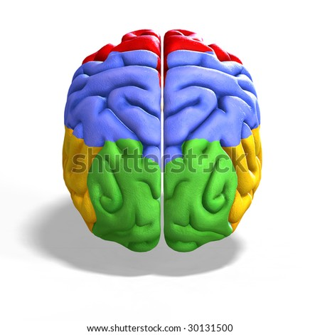 schematic illustration of a human brain with clipping path - stock photo