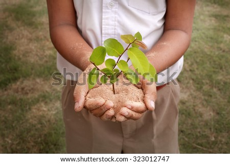 School boy hands stand holding sand and tiny plant attempt to show environment and saving green concept - stock photo