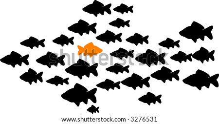 school of fish with one orange fish swimming the opposite direction - stock photo