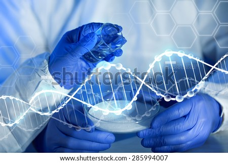 science, chemistry and people concept - close up of scientists hands with glass and chemical powder in petri dish making test or research at laboratory over blue dna molecule structure - stock photo