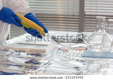 Scientist dressed in protective gear sweetcorn over the table in lab - close up - stock photo