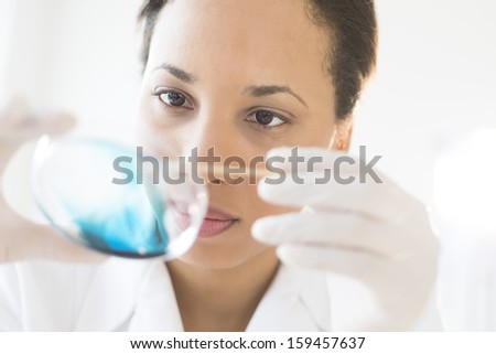Scientist examining solution in petri dish at a laboratory - stock photo