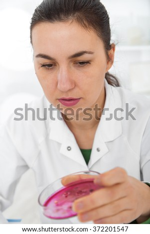 Scientist examining solution in petri dish at a laboratory.Toning image. - stock photo