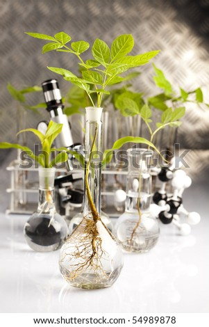 Scientist working in a laboratory and plants - stock photo