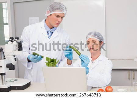 Scientists examining green pepper in laboratory - stock photo