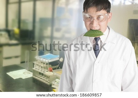 Scientists interested in the leaves in the laboratory. - stock photo