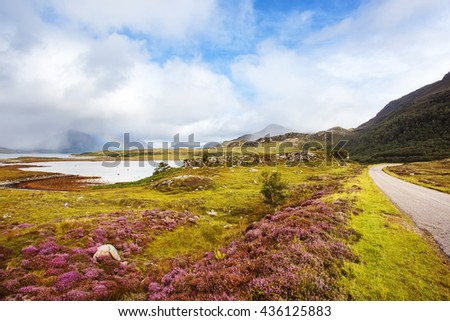 Scotland landscape with heather flowers by road side with mountains and rainbow. Wester Ross region, Scotland, UK - stock photo