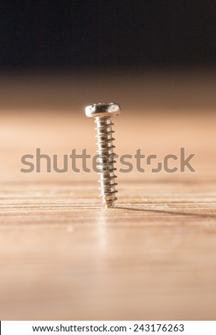 screw. close-up - stock photo