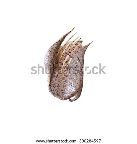 Scrub sample isolated on white background - stock photo