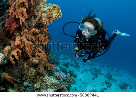 scuba diver and soft coral reef - stock photo
