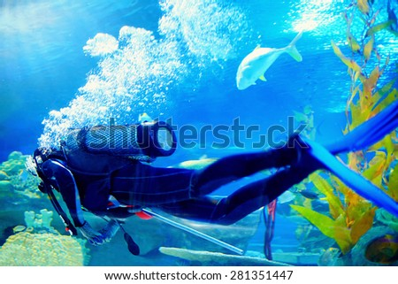 scuba diver swims underwater among reefs - stock photo