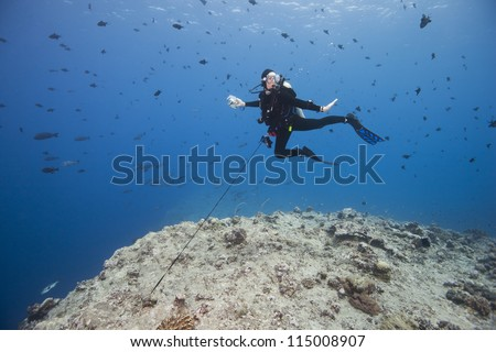 Scuba diver using a reef hook to watch sharks and other fish in the strong currents of the world famous Blue Corner dive site off the islands of Palau in Micronesia. - stock photo