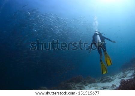Scuba diver watching huge school of Jack fish swirling underwater - stock photo