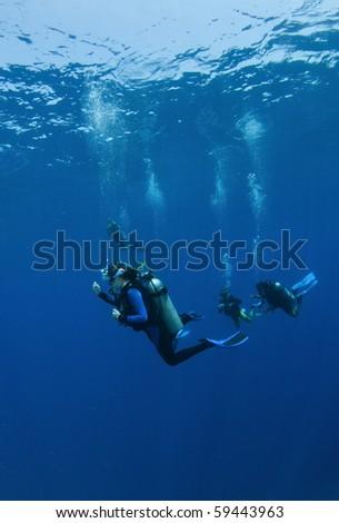 scuba divers decend on a dive - stock photo