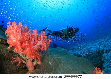 Scuba divers exploring coral reef with fish - stock photo