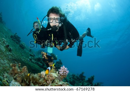 scuba divers look at tropical fish underwater in clear blue water - stock photo