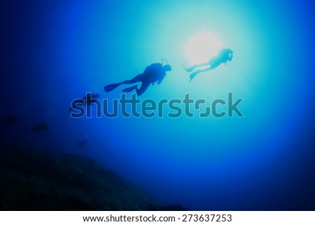the little mermaid deeper icon analysis 1 t he little mermaid far out at sea the water is as blue as the petals of the loveliest cornflower and as clear as the purest glass, but it is very deep, deeper than any anchor cable can reach, many church towers would have.
