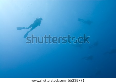 Scuba divers silhouettes in the blue with sunlight in the background. Sodfa, Sharm el Sheikh, Red Sea, Egypt. - stock photo