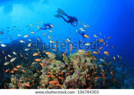 Scuba Divers swim over coral reef with tropical fish - stock photo